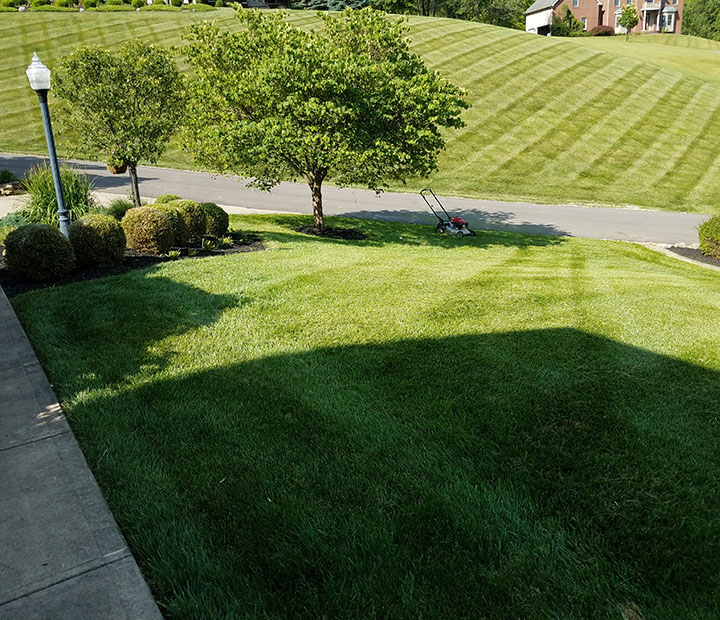 Browns property services lawn care lawncarebrownspropertyservicesgranvilleohio publicscrutiny Image collections