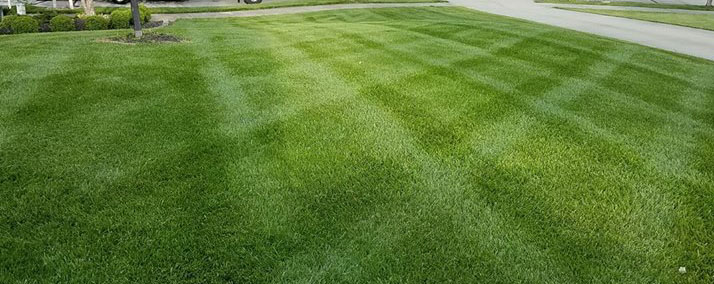 Lawn care browns property services mowing mow lawn either by using a publicscrutiny Image collections